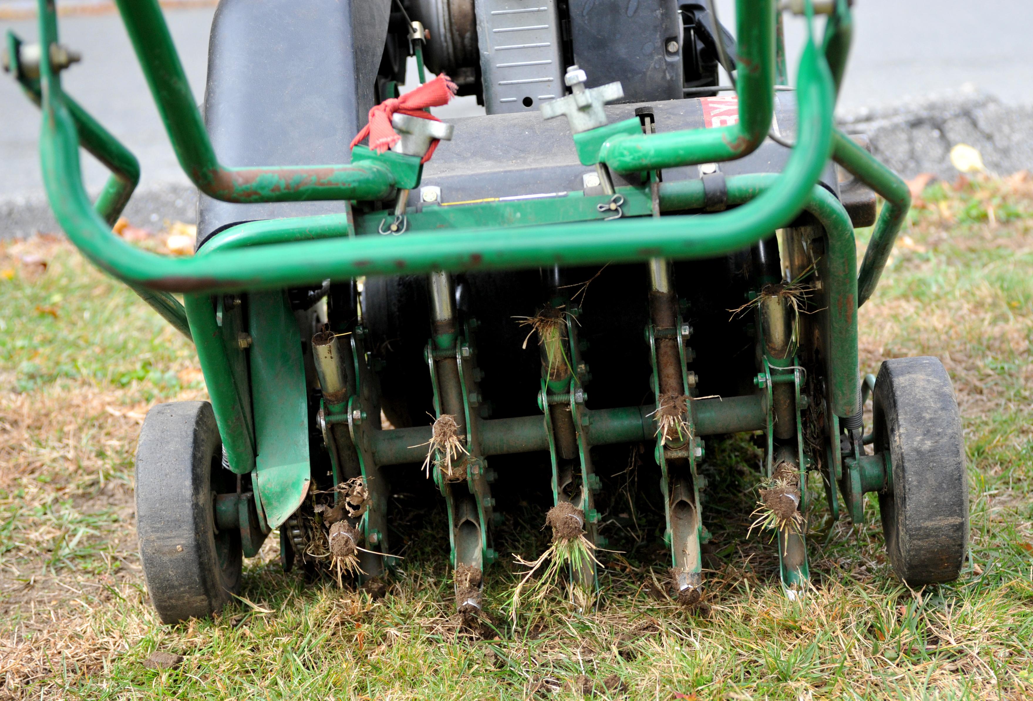 lawn top dressing machine rental
