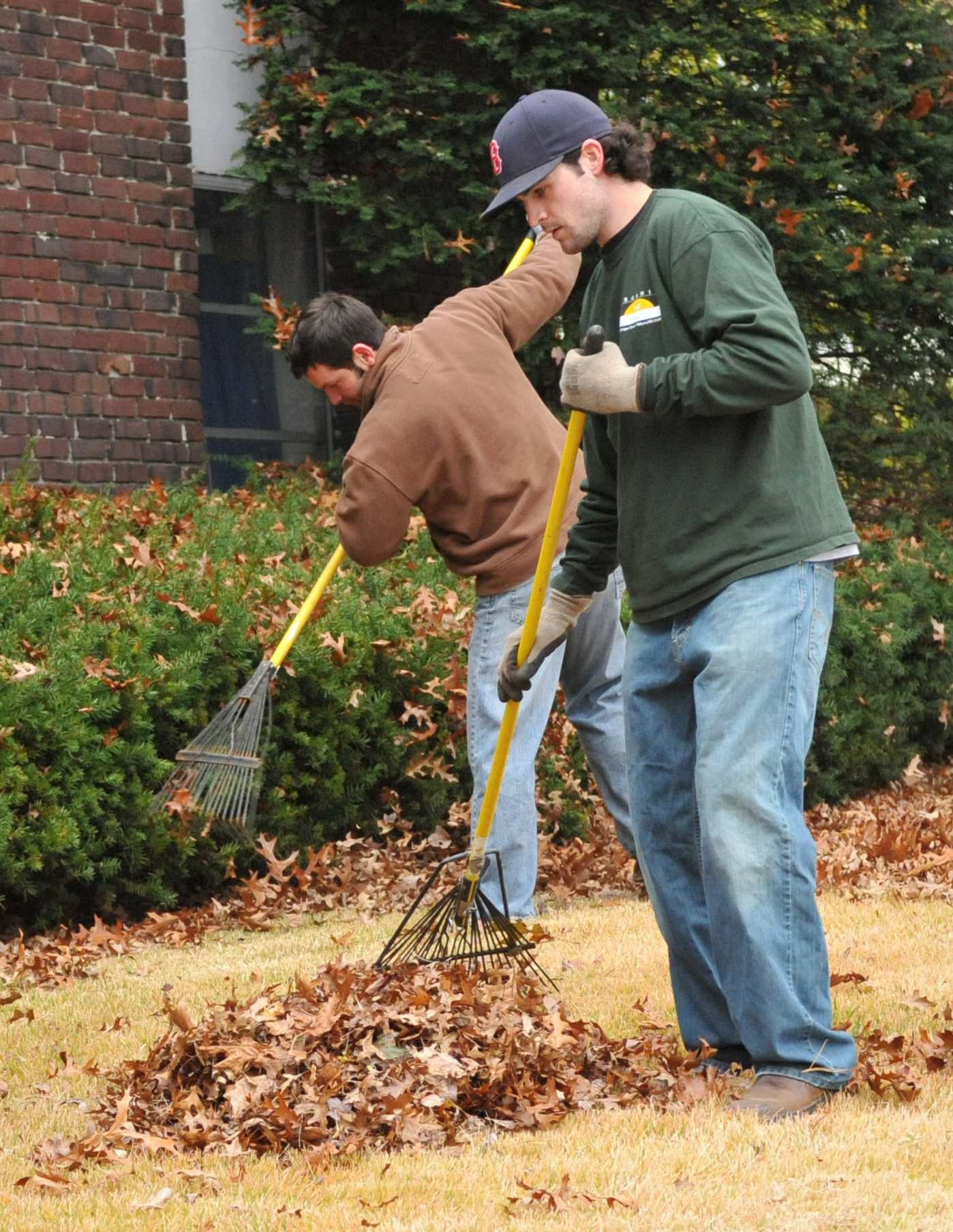Time for fall cleanup organic soil solutions for Organic soil solutions