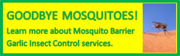 mosquito-control-3