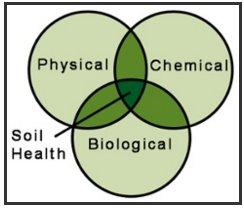 soil test 2